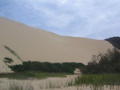 thurra_dune